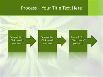Young cannabis PowerPoint Templates - Slide 88