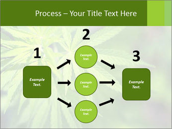 Young cannabis PowerPoint Templates - Slide 92