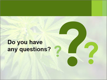Young cannabis PowerPoint Template - Slide 96