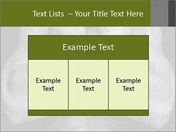 0000087289 PowerPoint Template - Slide 59