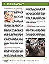0000087301 Word Template - Page 3
