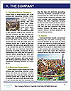 0000087303 Word Templates - Page 3