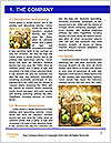 0000087309 Word Templates - Page 3