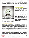0000087315 Word Templates - Page 4