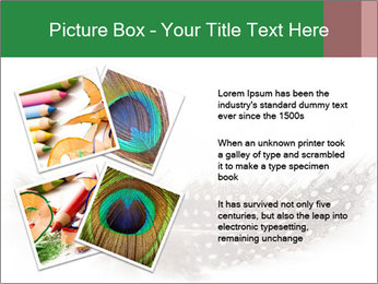 Feather of a bird PowerPoint Templates - Slide 23