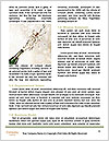 0000087331 Word Templates - Page 4
