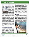 0000087335 Word Template - Page 3