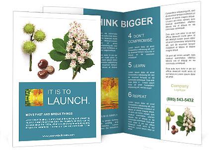 0000087338 Brochure Template