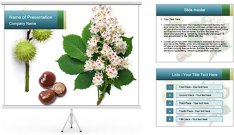 0000087338 PowerPoint Template