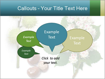 Horse-chestnut PowerPoint Templates - Slide 73