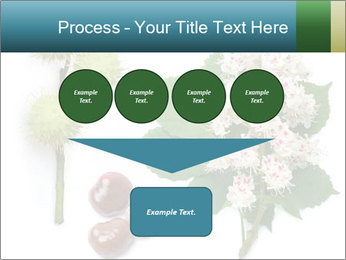Horse-chestnut PowerPoint Templates - Slide 93