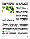 0000087338 Word Template - Page 4