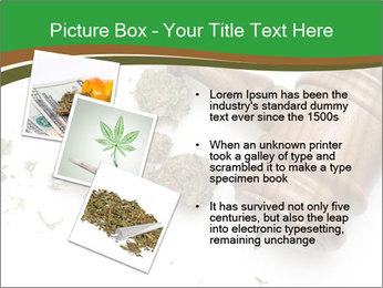 Marijuana PowerPoint Template - Slide 17