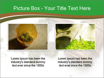 Marijuana PowerPoint Template - Slide 18