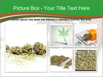 Marijuana PowerPoint Templates - Slide 19