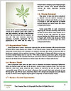 0000087339 Word Template - Page 4