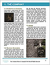0000087342 Word Template - Page 3