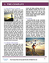 0000087344 Word Template - Page 3