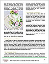 0000087355 Word Templates - Page 4