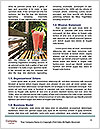 0000087361 Word Template - Page 4