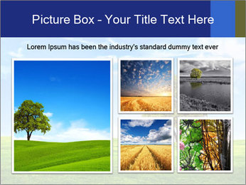 Tree and blue sky PowerPoint Template - Slide 19