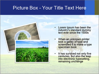 Tree and blue sky PowerPoint Template - Slide 20