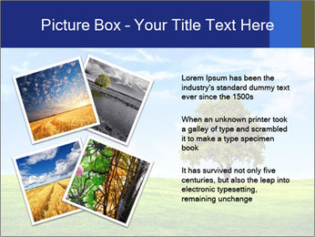 Tree and blue sky PowerPoint Template - Slide 23