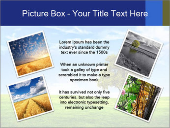 Tree and blue sky PowerPoint Template - Slide 24