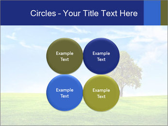 Tree and blue sky PowerPoint Template - Slide 38