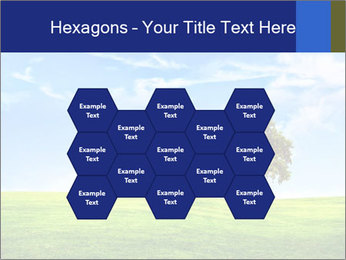 Tree and blue sky PowerPoint Template - Slide 44