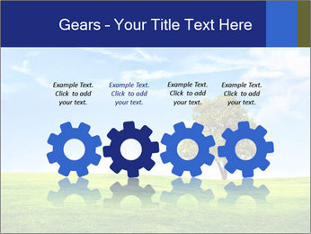 Tree and blue sky PowerPoint Templates - Slide 48