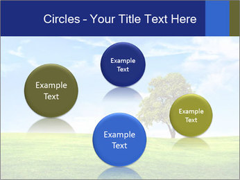 Tree and blue sky PowerPoint Template - Slide 77