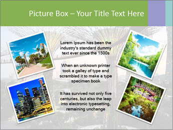 0000087380 PowerPoint Template - Slide 24