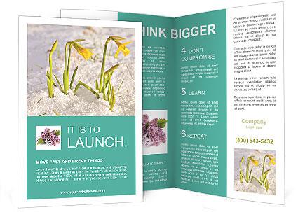 0000087383 Brochure Templates
