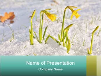 0000087383 PowerPoint Template - Slide 1