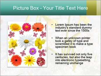 0000087383 PowerPoint Template - Slide 13