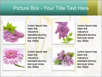 0000087383 PowerPoint Template - Slide 14