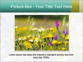 0000087383 PowerPoint Template - Slide 15