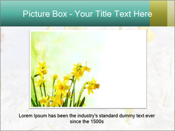 0000087383 PowerPoint Template - Slide 16