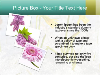 0000087383 PowerPoint Template - Slide 17
