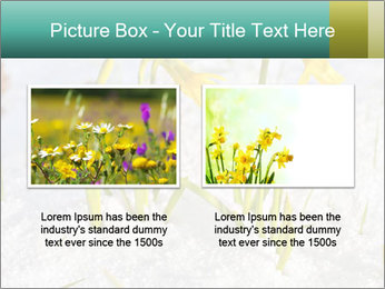 0000087383 PowerPoint Template - Slide 18