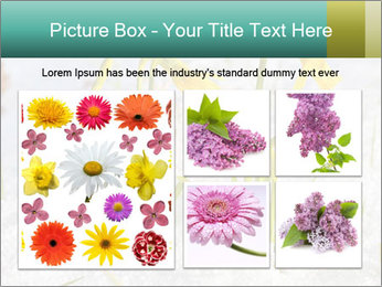 0000087383 PowerPoint Template - Slide 19