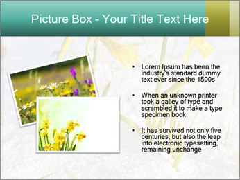 0000087383 PowerPoint Template - Slide 20