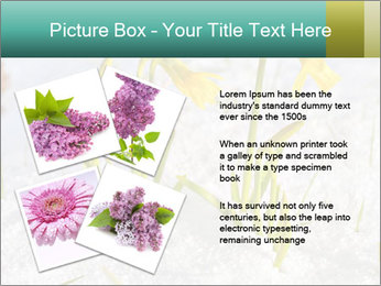 0000087383 PowerPoint Template - Slide 23