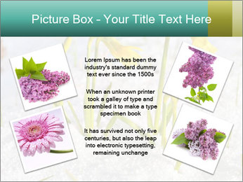 0000087383 PowerPoint Template - Slide 24