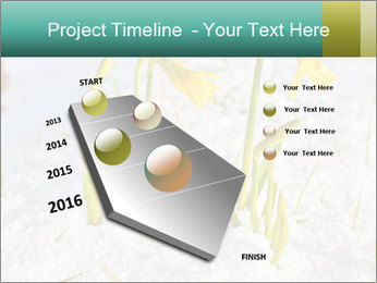 0000087383 PowerPoint Template - Slide 26