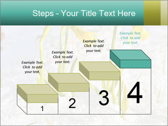 0000087383 PowerPoint Template - Slide 64