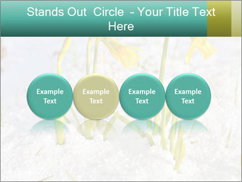 0000087383 PowerPoint Template - Slide 76