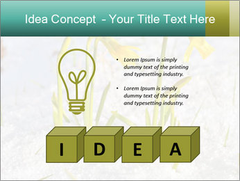 0000087383 PowerPoint Template - Slide 80