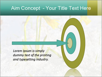 0000087383 PowerPoint Template - Slide 83
